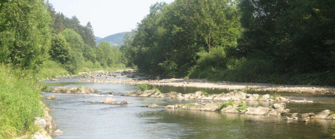 Reka Becva otrava