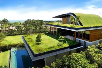 Na výstavbu zelených střech půjdou miliardy korun