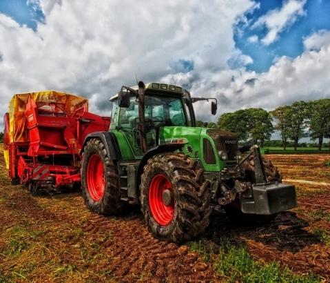 Zemědělství se koncentruje do větších podniků