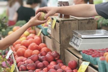 Příchod jara je v České republice již více než deset let spojen také se startem sezóny oblíbených farmářských trhů.