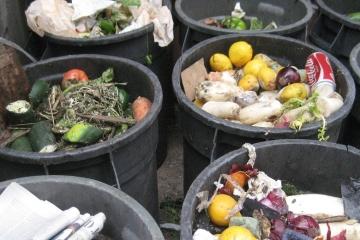 Plýtvání potravinami v českých domácnostech, jak plýtvání omezit