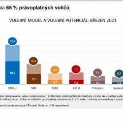 Volební průzkum březen 2021